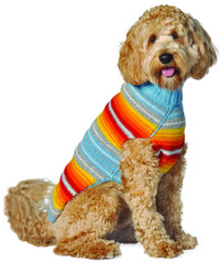 Turq Serape Sweater