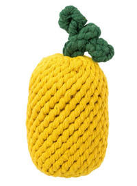 Pineapple Rope Dog Toy