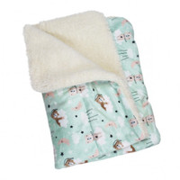 Ultra Soft Minky/Plush Bedtime Bear Blanket