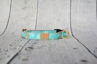 Aqua Parens Collar & Lead