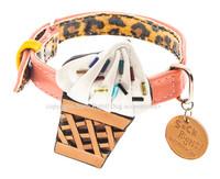 Twisted Vanilla Cone Dog Collar