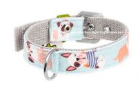 Dogs in Blue Textile Collar