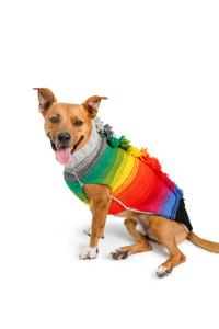 Rainbow Mohawk Dog Sweater