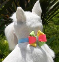 Susan Lanci Angela Pinwheel Bow Collar