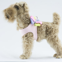 Puppy Pink Harness Base Color