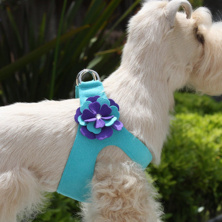 Bimini Blue Harness Color