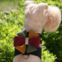 Susan Lanci Autumn Pinwheel Tinkie Harness
