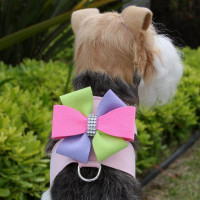 Puppy Pink Harness