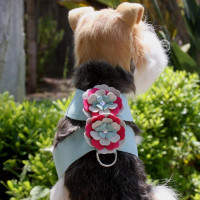 Susan Lanci Blossom Flowers Tinkie Harness
