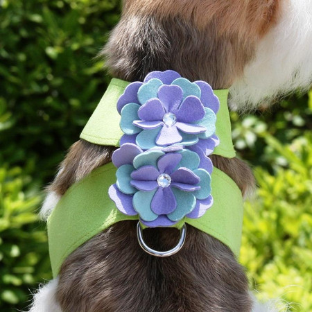 Periwinkle/Mint Flowers on Kiwi Harness