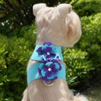 Susan Lanci Violet Flowers Tinkie Harness