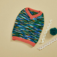Louisdog V-Neck Genius Sweater Vest