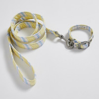 Louisdog Stripes & Stripes Collar/Leash Set
