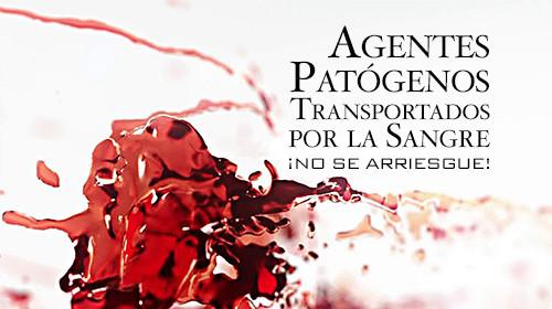 Agentes Patógenos Transportados por la Sangre: ¡No se arriesgue!