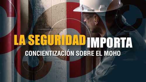 La seguridad importa: Concientización sobre el moho