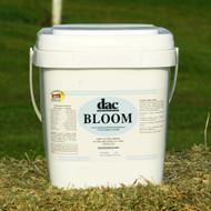 DAC Bloom - 5lb