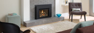 Regency® Liberty® L234 Small Gas Insert