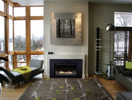 Loft Series Direct-Vent Fireplace Insert - Intermittent Pilot Control with On/Off Switch - Small - DVL25IN73