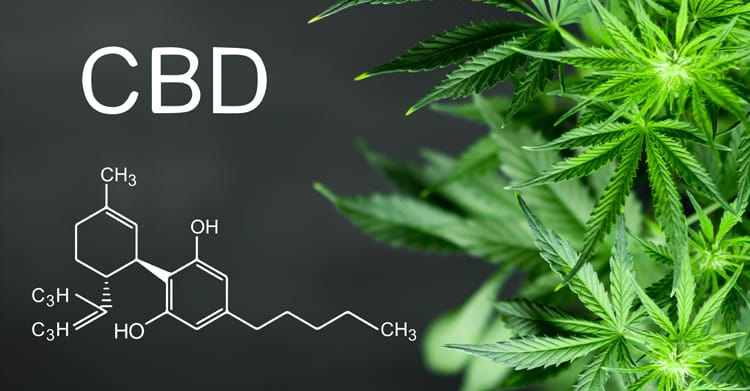cbd-oil-stores-near-me-cbd-store-finder-crystal-lake-il.jpg