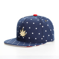 C&S GOLD LABEL LIL BUDZ SNAPBACK
