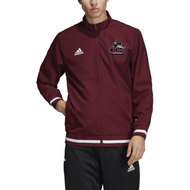 Ludlow Adidas Team 19 Woven Warmup Jacket - Football