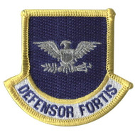 Defensor Fortis flash embroidered with colonel rank for Security Forces beret