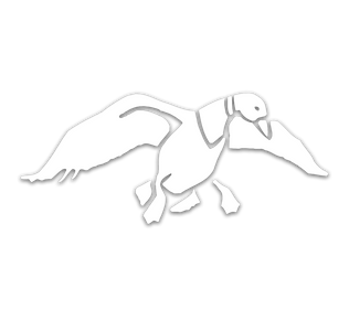 Duck Commander DUCK Window Decal