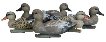 Gadwall Decoys - Foam Filled