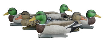 Mallard Decoys - Foam Filled