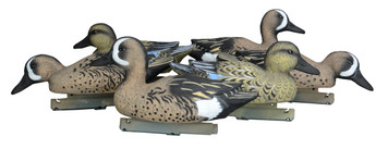 Blue Winged Teal Decoys - Foam Filled