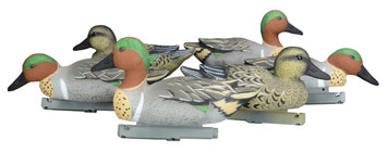 Green Wing Teal Decoys - Foam Filled