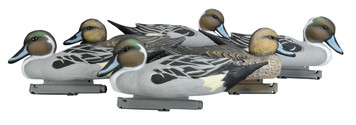 Pintail Decoys - Foam Filled