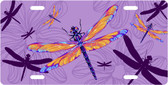 Rainbow Dragonflies License Plate Tag