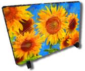 Sunflower Field Decorative Watercolor Stone Plaque