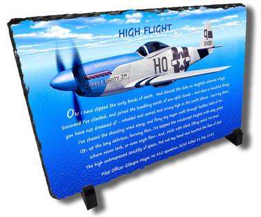 Decorative Aviator Stone Plaque