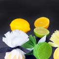 Lemon Wraps & Ties x100