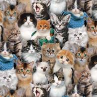 Box Bags - All Fabric - Kitties