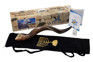 "SHOFAR Set Half Polished Half Natural Kudu Horn Yemenite + Bag + Spray + Guide + Carrying Box Case (30""-32"")"