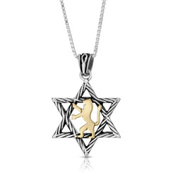 kabbalah necklace 925 Sterling Silver Star of David with 9K Gold Lion of Judah Pendant