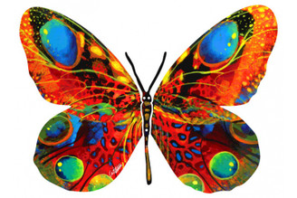 Alona Butterfly ( Wall Hanging ) By David Gerstein