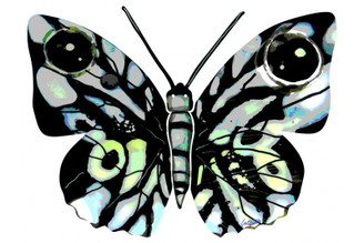 Naomi  Butterfly ( Wall Hanging  ) By David Gerstein