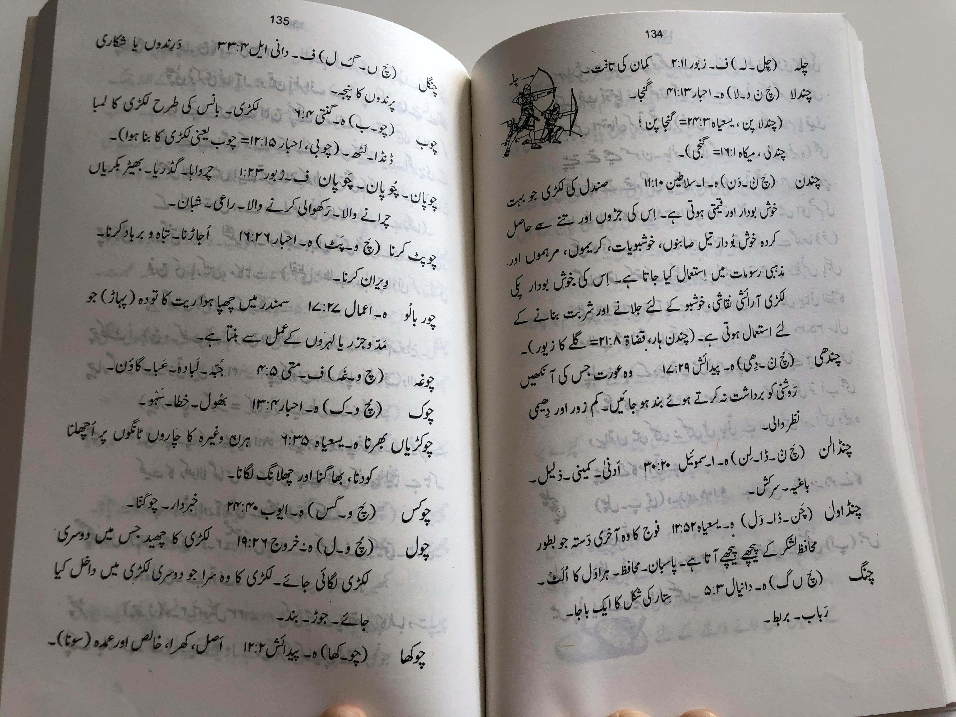 -dictionary-of-difficult-urdu-bible-words-by-younus-aamir-paperback-6-.jpg