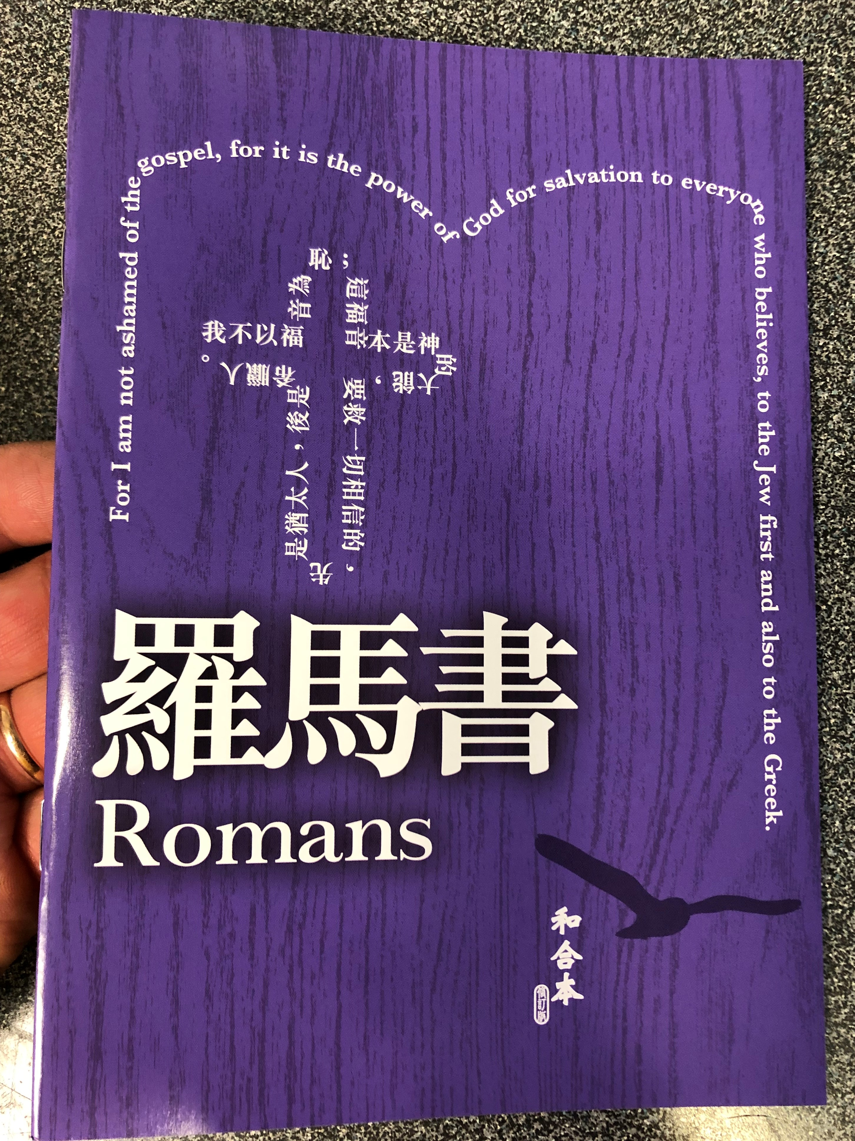 -romans-in-chinese-language-super-large-print-edition-revised-chinese-union-version-cu2010-hkbs-2-.jpg