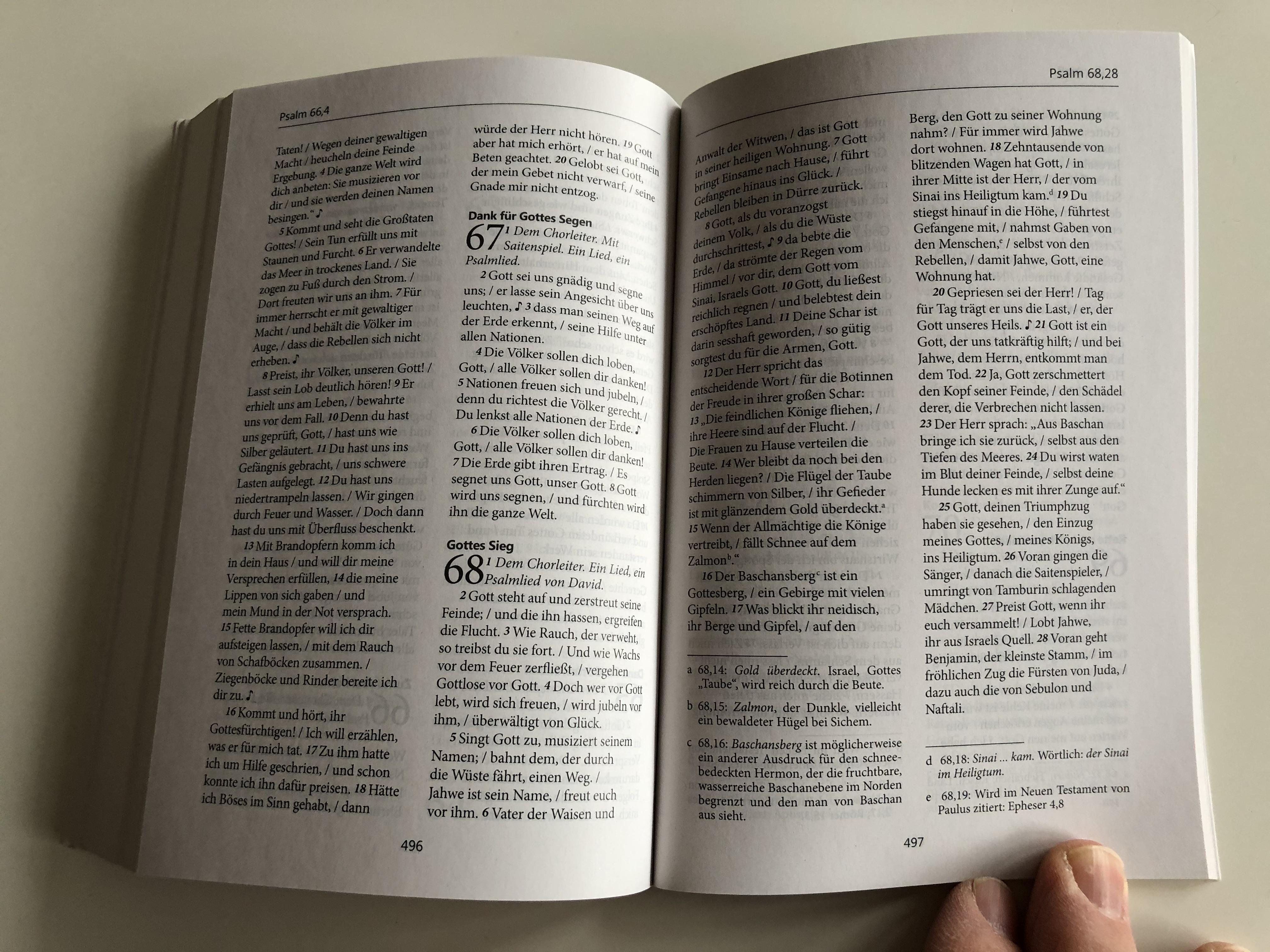 bibel.heute-german-language-nt-with-psalms-8.jpg