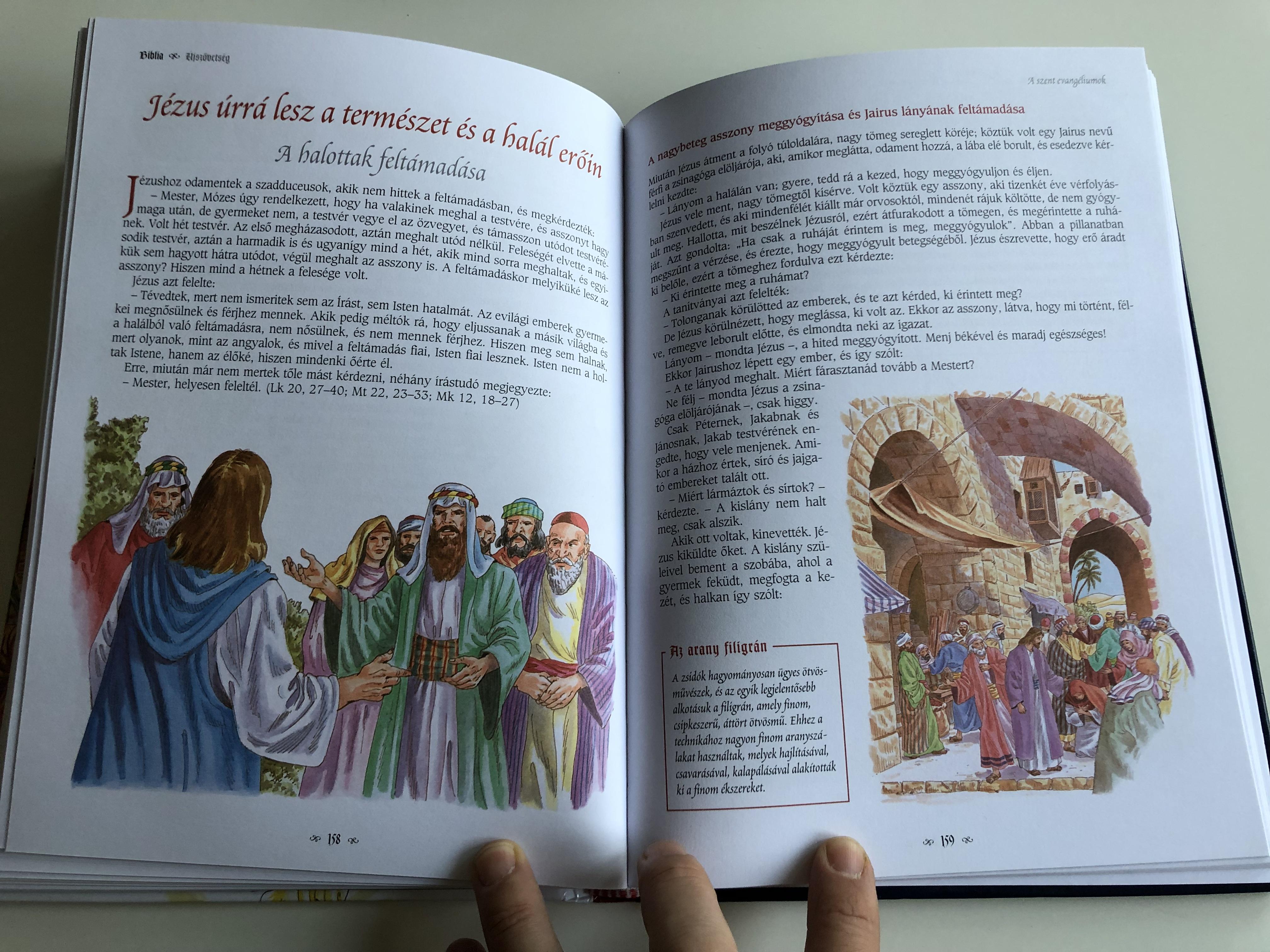 biblia-gyermekeknek-hungarian-bible-for-children-editor-campos-jim-nez-m-ria-hardcover-2010-napraforg-kiad-7-.jpg