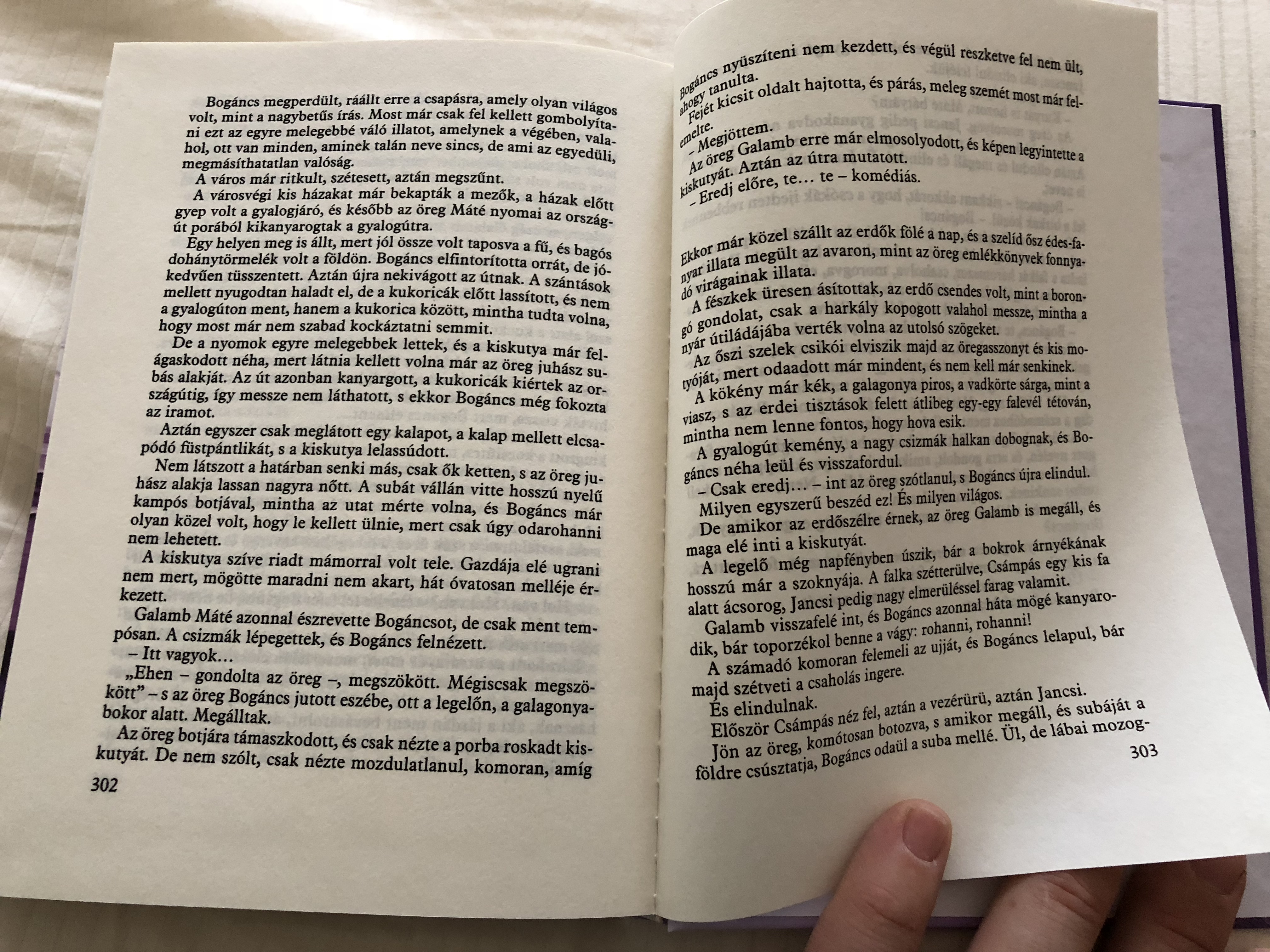 bog-ncs-by-fekete-istv-n-m-ra-k-nyvkiad-2015-hardcover-hungarian-literary-classic-8-.jpg