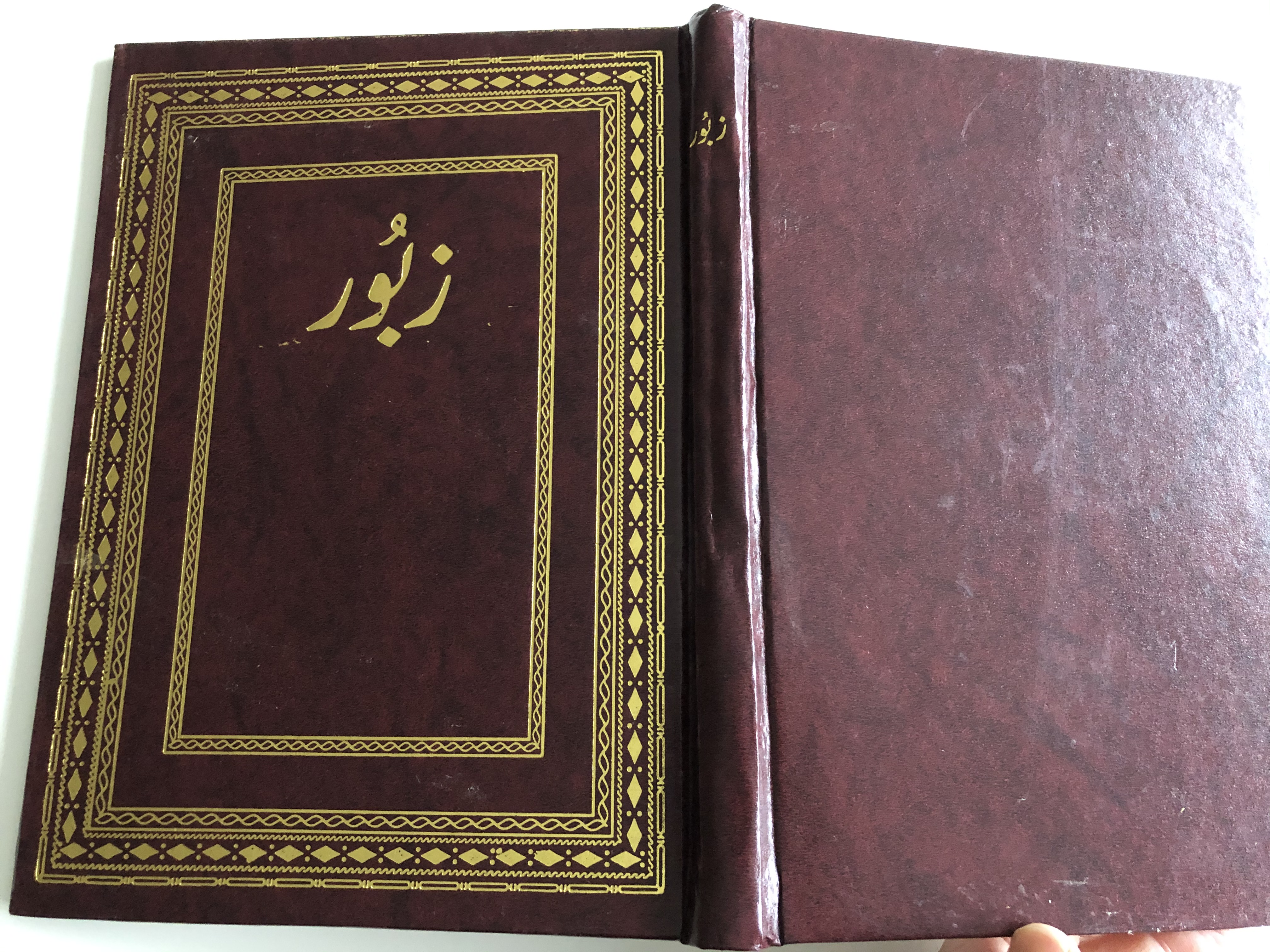 book-of-psalms-from-the-old-testament-in-urdu-language-large-print-7-.jpg