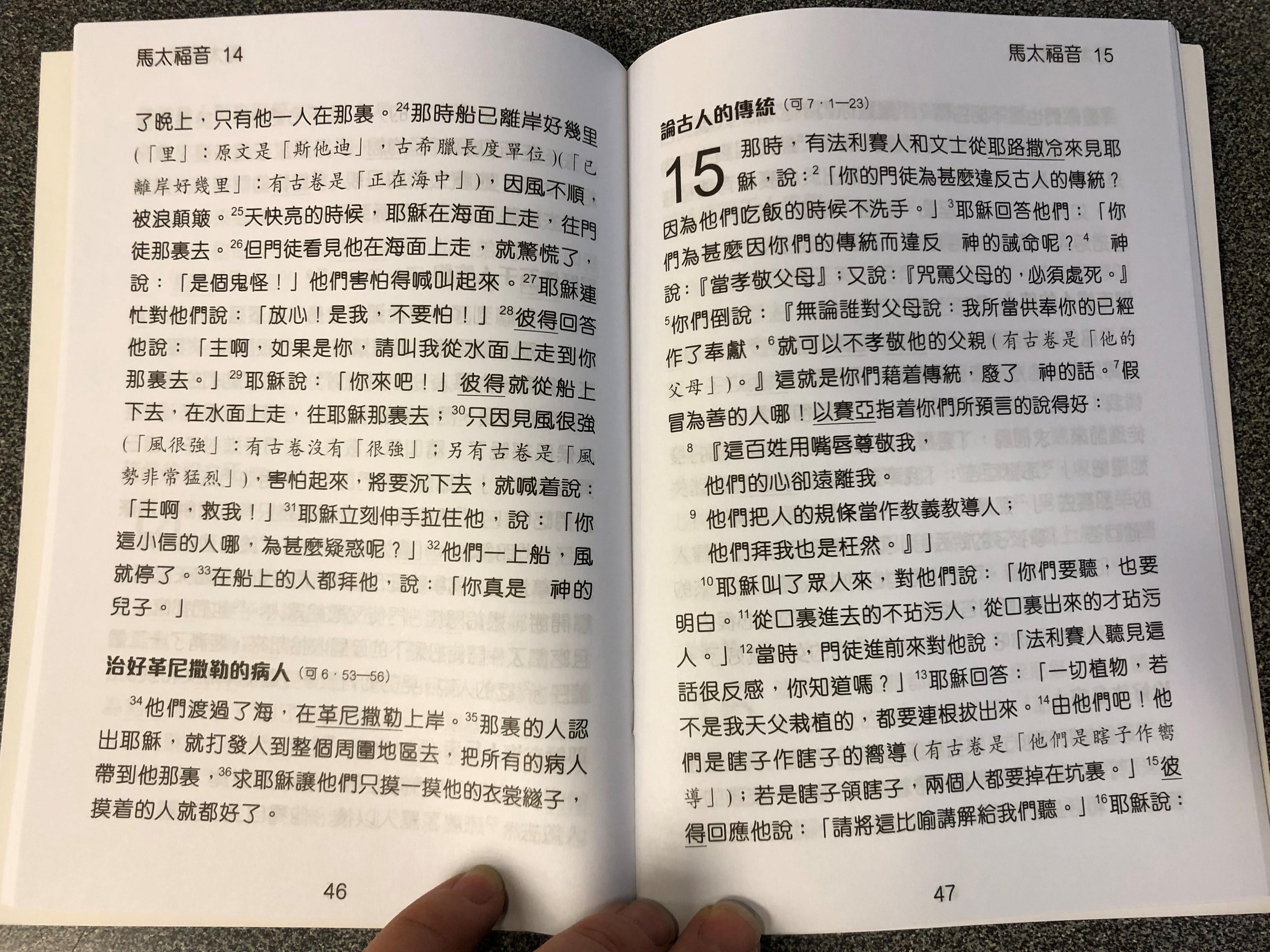 chinese-gospel-of-matthew-with-gospel-bridge-super-large-print-3-.jpg