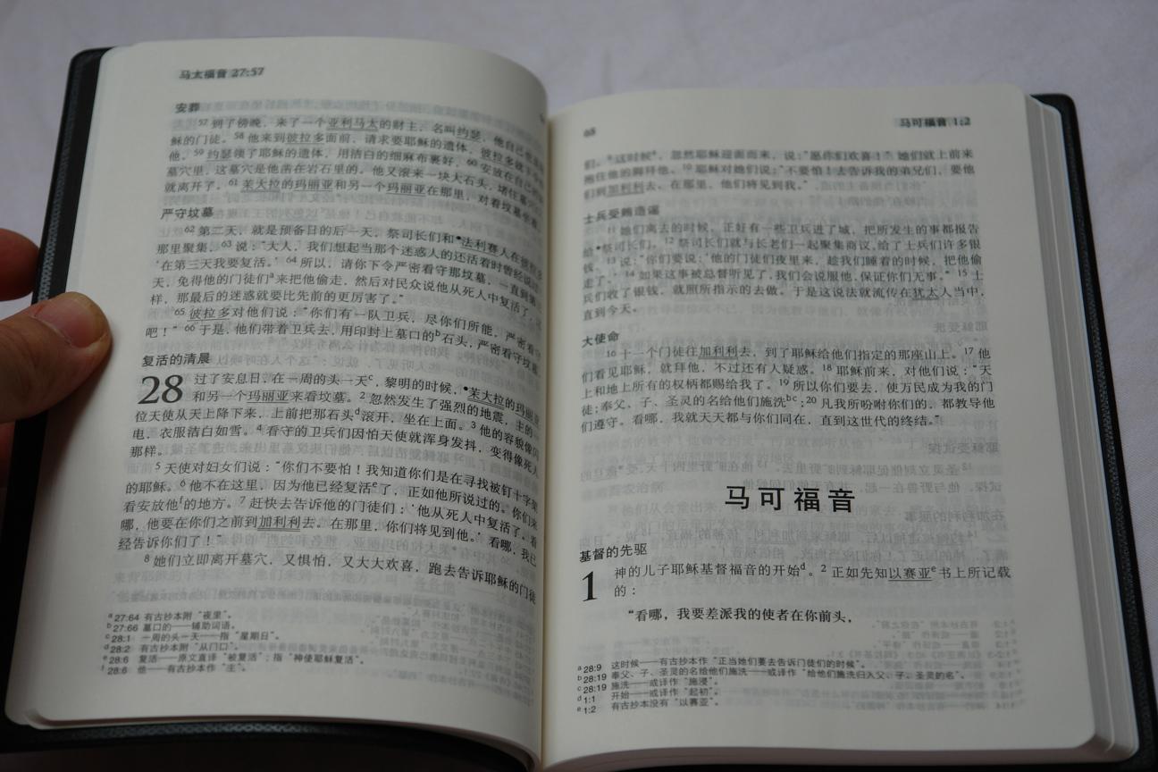 chinese-standard-bible-holy-bible-new-testament-black-vinyl-bound-2015-7.jpg
