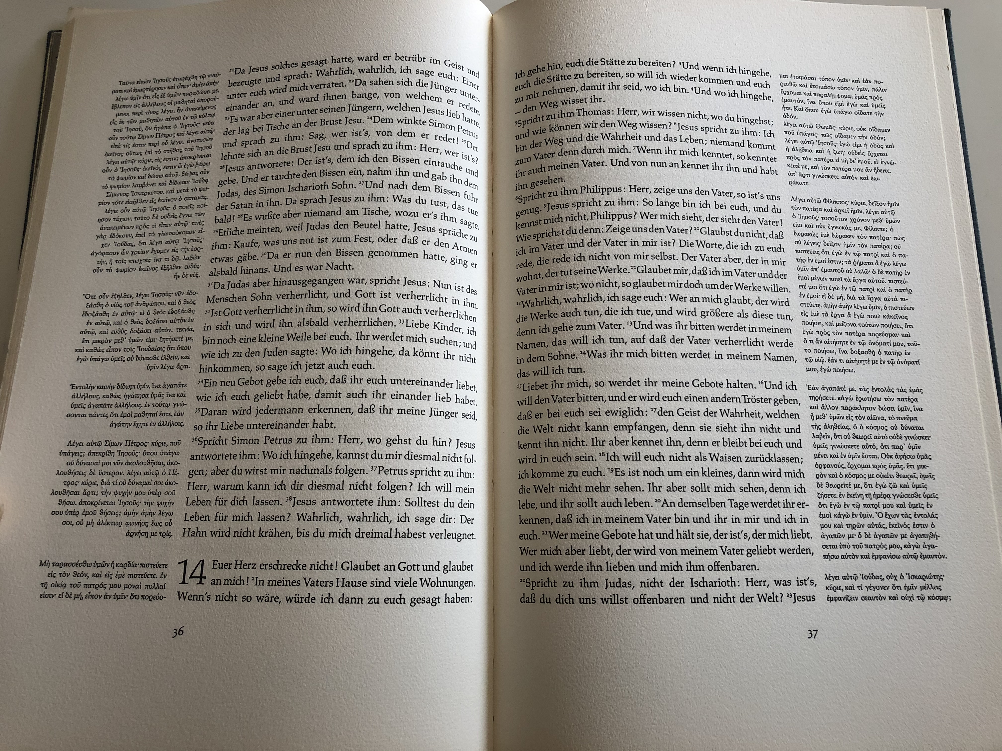 das-evangelium-nach-johannes-german-language-gospel-according-to-john-8.jpg